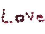 love.romance.hot emotion/feelings poster