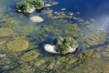iles dans le delta de l'okavango