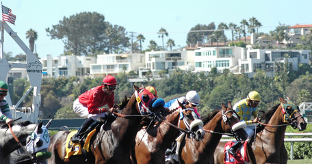 race horses coming out of the gate