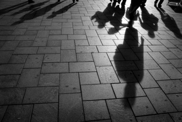 shadows on the pavement