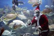 santa clause feeding fishes