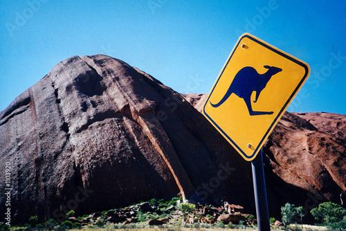 panneau kangourou roc