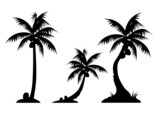 palm trees (triple)