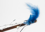 blue feather on magic wand poster