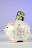 piggy bank with dollar poster
