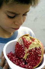 granada_fruta-02