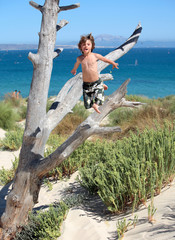 boy jumping out of tree on vacation