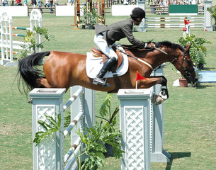 show horse & rider leaping a double barrier