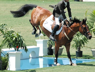show horse clearing a water barrier