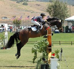 rider & horse jumping