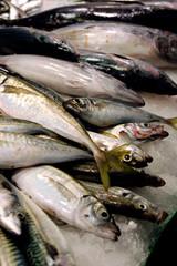 poisson frais du marché