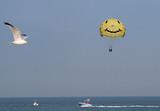 parasailing poster