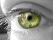 ojo chip