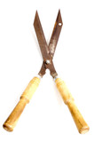 garden scissors poster