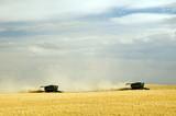 harvest time 9 poster