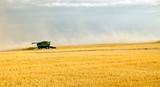 harvest time 6 poster