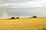 harvest time 3 poster