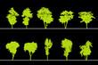 arbres pour coupes et élévations