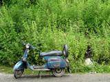 vieux scooter sur fond de marijuana poster