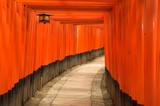 Brama Tori, Kyoto, Japonia - 1158562