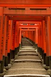 torii gates of fushimi inari shrine, kyoto, japan poster