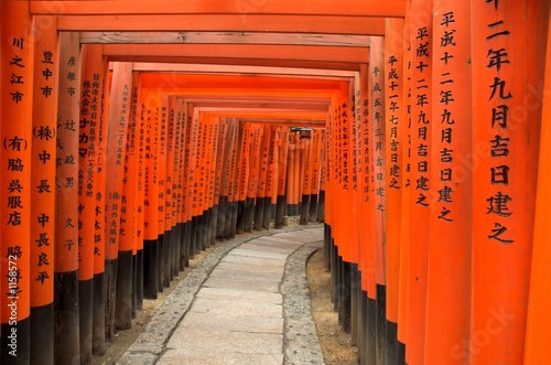 torii gates of fushimi inari shrine, kyoto, japan - 1158572
