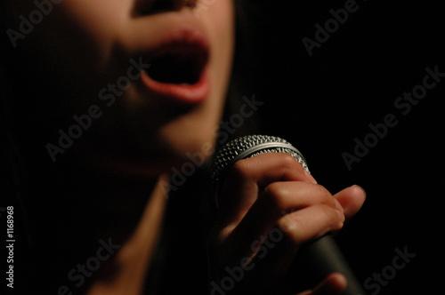 Leinwandbild Motiv the voice
