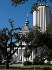 florida state capitol buildings - vertical