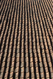 roofing tiles. poster