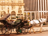 horse carriage ride poster