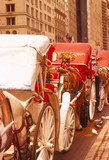 horse carriages in new york poster
