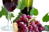 wine etc poster