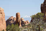 touring in arches national park 7 poster