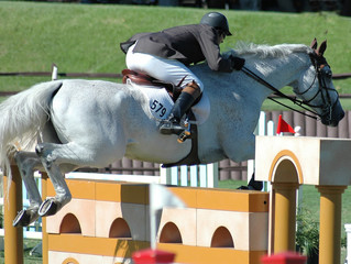 grey show horse & rider jumping barrier