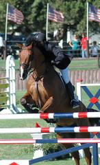 show horse jumping barrier