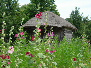 a rural log-house with beautiful flowers