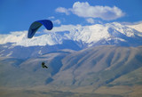 paraglider flying over macedonia poster