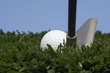 golf ball on grass with golf club against blue sky poster