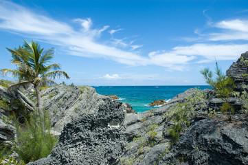 bermuda volcanic rock