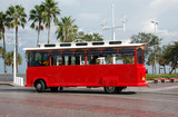sightseeing trolley in florida poster