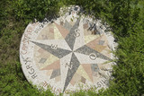 ancient compass rose poster