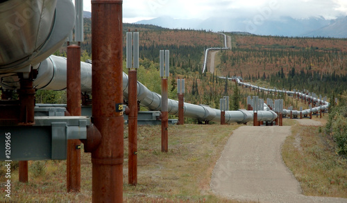trans-alaska oil pipeline - 1209565