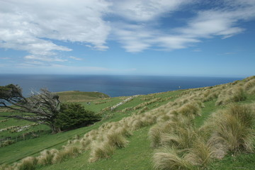 otago seaside