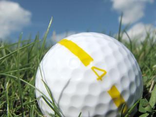 closeup of golf ball in grass