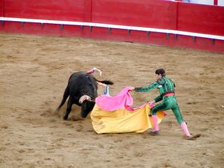 bull fighting 2