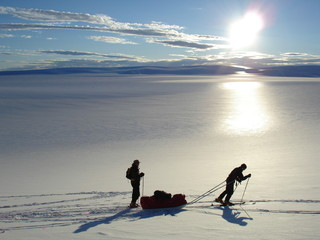 moving in the arctic