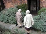 elderly/women/ visitors entering together poster