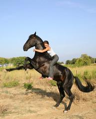 cheval en liberté 2