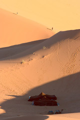 camp in dunes. sahara.