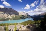 panorama of the peyto lake poster